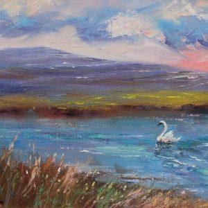 Flaggy Shore Swan